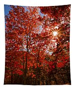 Red Autumn Leaves Tapestry