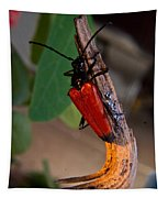 Red Beetle Rising Tapestry