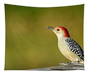 Red Bellied Woodpecker Tapestry
