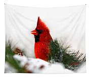 Red Cardinal Tapestry