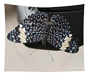 Red Cracker Butterfly Tapestry
