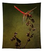 Red Dragonfly On A Dead Plant Tapestry