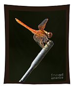 Red Dragonfly On An Antenna Tapestry