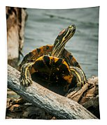 Red Eared Slider Turtle Tapestry