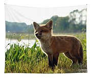 Red Fox Kit Tapestry