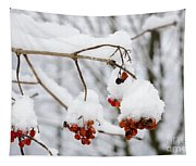 Red Fruit With Snow Tapestry