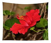 Red Hibiscus Flower Tapestry