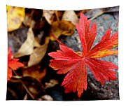 Red Hot Tapestry