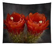 Red Hot Pair  Tapestry