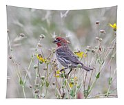 Red House Finch In Flowers Tapestry