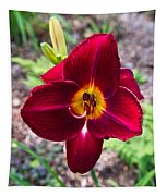 Red Lady Lily 2 Tapestry