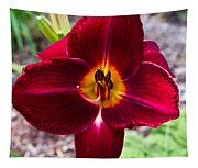 Red Lady Lily 4 Tapestry