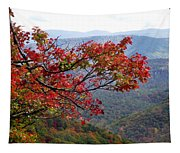 Red Leaves In The Blueridge Tapestry