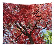 Red Leaves On Tree Tapestry