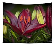 Red Lily 6 Tapestry