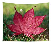 Red Maple Leaf And Dew Tapestry