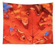 Peak Color Maple Leaves Tapestry