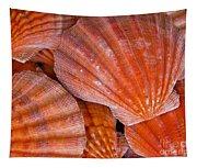 Red Orange Sea Shells Tapestry