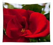 Red Passion Tapestry