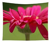 Red Pink Daisy Tapestry