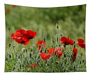 Red Poppies 3 Tapestry
