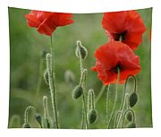 Red Red Poppies 1 Tapestry