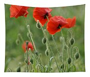 Red Red Poppies 2 Tapestry