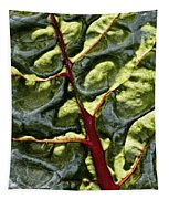 Red River Through Green Hills Tapestry