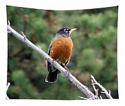 Red Robin II Tapestry