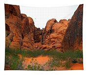 Red Rock Canyon. Tapestry