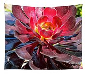 Red Succulent Plant Tapestry