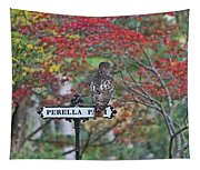 Red Tail Hawk Tapestry