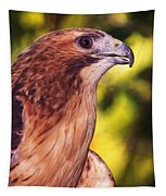 Red Tailed Hawk - 59 Tapestry