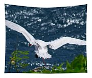 Red Tailed Tropic Bird Tapestry