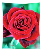Red Velvet Palm Springs Tapestry