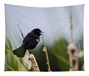 Red Winged Blackbird Singing Tapestry