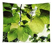 Catalpa Branch Tapestry