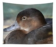 Redhead Duck Tapestry