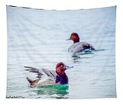 Redhead Ducks Tapestry