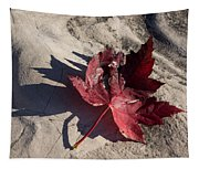 Reds And Purples - Deep Red Maple Leaf And Its Shadow Tapestry