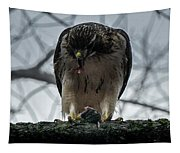 Redtail Hawk And Mouse Tapestry