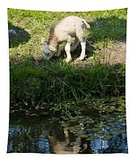 Reflected Cute Little Lamb Tapestry