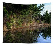 Reflecting Puddle At The Beach Tapestry