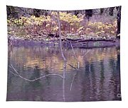 Reflection Of Fall Tapestry