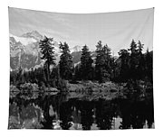 Reflection Of Trees And Mountains Tapestry