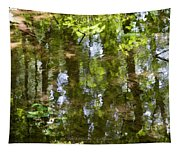 Reflection Of Woods Tapestry