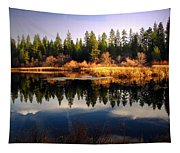 Reflections At Grace Lake Tapestry