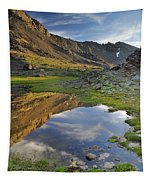 Reflections At The Mountain Lake Tapestry