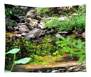 Reflections In The Stream Tapestry