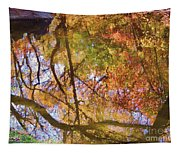 Reflections Of A Colorful Fall 002 Tapestry
